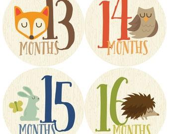Monthly Baby Sticker Boy, Baby Month Sticker, Woodland, Milestone Sticker, Months 13-24, Month by Month Baby Sticker, Baby Gift, Baby