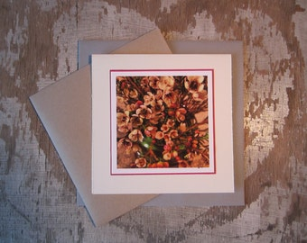 Waxflowers, handmade, greeting card, blank, square, photo