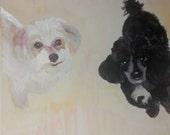 Two Mini Poodles