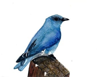 Watercolor Mountain Bluebird Print 8 x 10