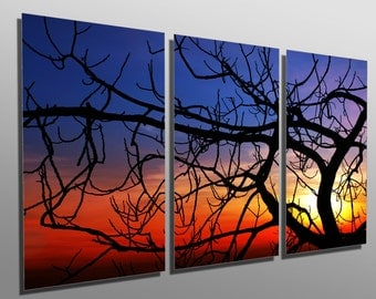 Metal Print -  Tree Fig at sunset - 3 Panel split (Triptych) - Metal wall art on HD aluminum prints for home, office decor & interior design