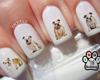 58 English Bulldog Nail Decals