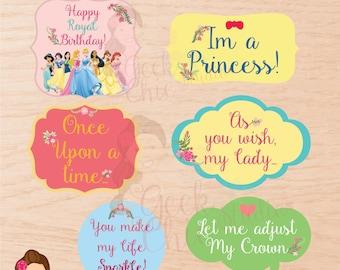 Princess, princess props; Digital Props; Photo Booth Props;  Princess party;  Printable props; DIY; Party Props,