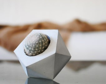 POLYGON   Geometrische konkrete saftigen Pflanzer