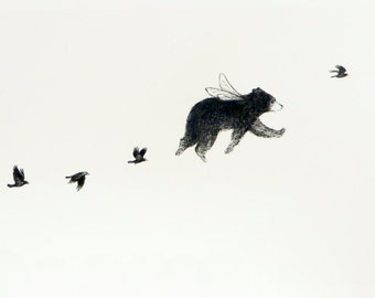 Flying Bear Print