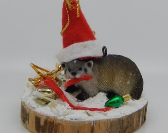 Badger Getting Into Christmas Spirit