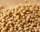 Bulk Natural Mustard Seeds - Yellow - #1 Quality -