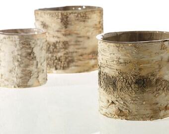 Birch Pots,  6 INCH