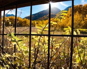 Sunshine through Ashcroft Ghost Town - Colorado Photography