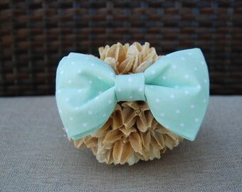 Mint polka dot bow tie