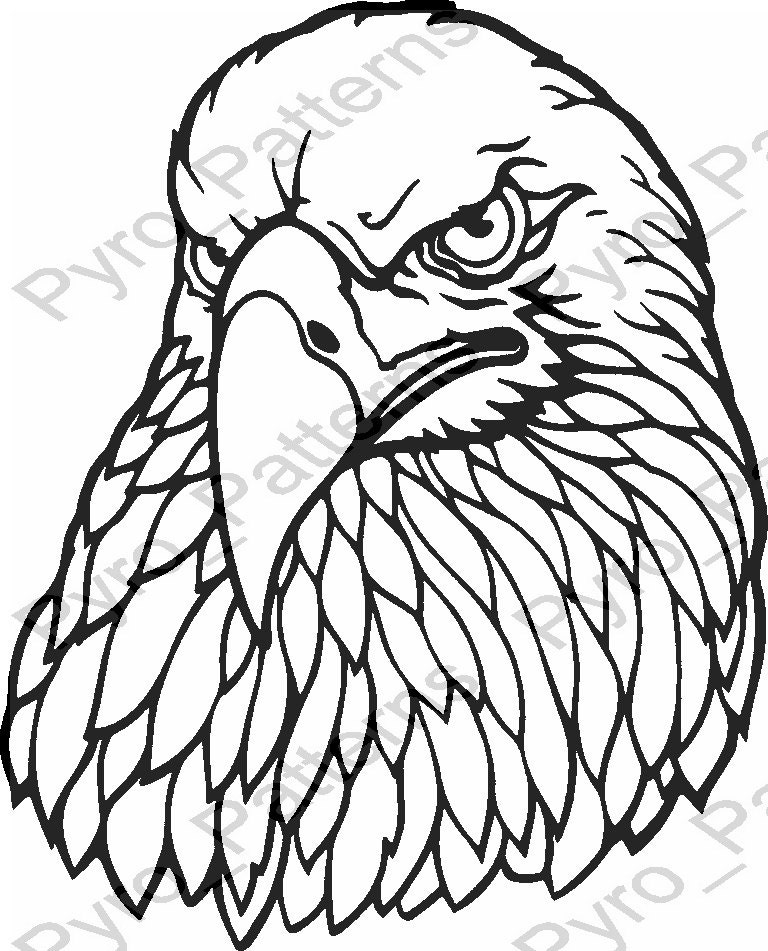 pyrography wood burning eagle head bird pattern printable