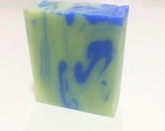 ROSEMARY-EUCALYPTUS SHAMPOO Soap