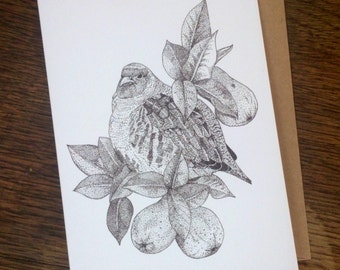 Partridge in a Pear Tree || Pack of 5 A6 greetings cards