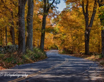 Ride through fall foliage on scenic by-way