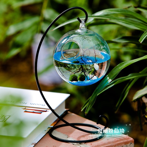 Aquarium kit 2 aquatic living moss ballsblue stonessea fan for Aquatic decoration