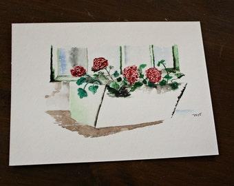 Window Box Begonias