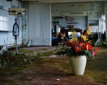Abandoned Hotel, urban decay, free US shipping, flowers in decay, fine art photo, Japanese print, derelict building, overgrown, nature photo