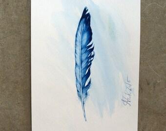 Bird feather blue
