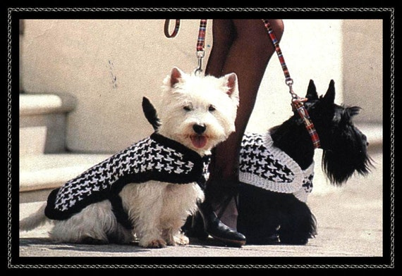 Knitting patt dogs checked coats/ fit westie size dog