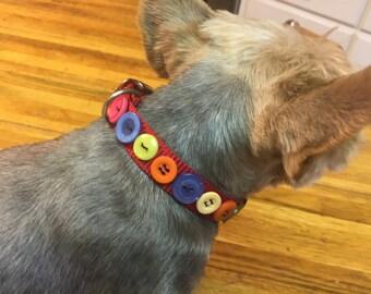 Dog button collar
