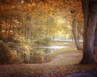 Rustic River Landscape Photography, Fall Foliage, Nature Photography, Rustic Decor Autumn NJ Landscape
