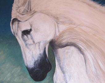 Templado, Beautiful Stallion