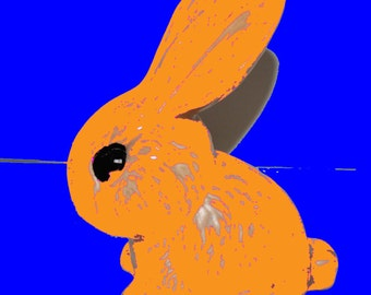 Orange rabbit (limited edition 1/250)