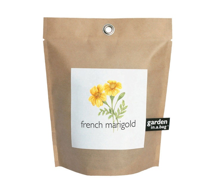 Marigold Garden In A Bag Self Contained Grow Kit Eco