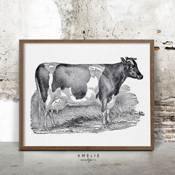 Dairy Cow Pillow Cover Holstein Cow Farmhouse Decor |Holstein Cow Decorations