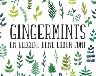 """Font """"Gingermints"""", hand drawn, commercial license, handwritten"""