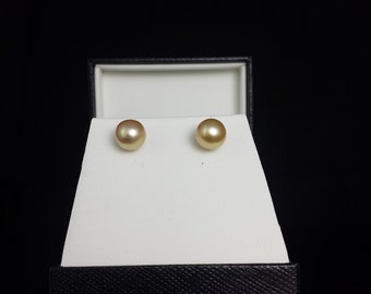 8.7mm Golden South Sea Pearl Studs