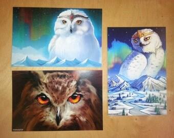 Postcard set. Owls. Set of 3. Author postcards. Owl postcard. Animals postcard. Greeting cards.