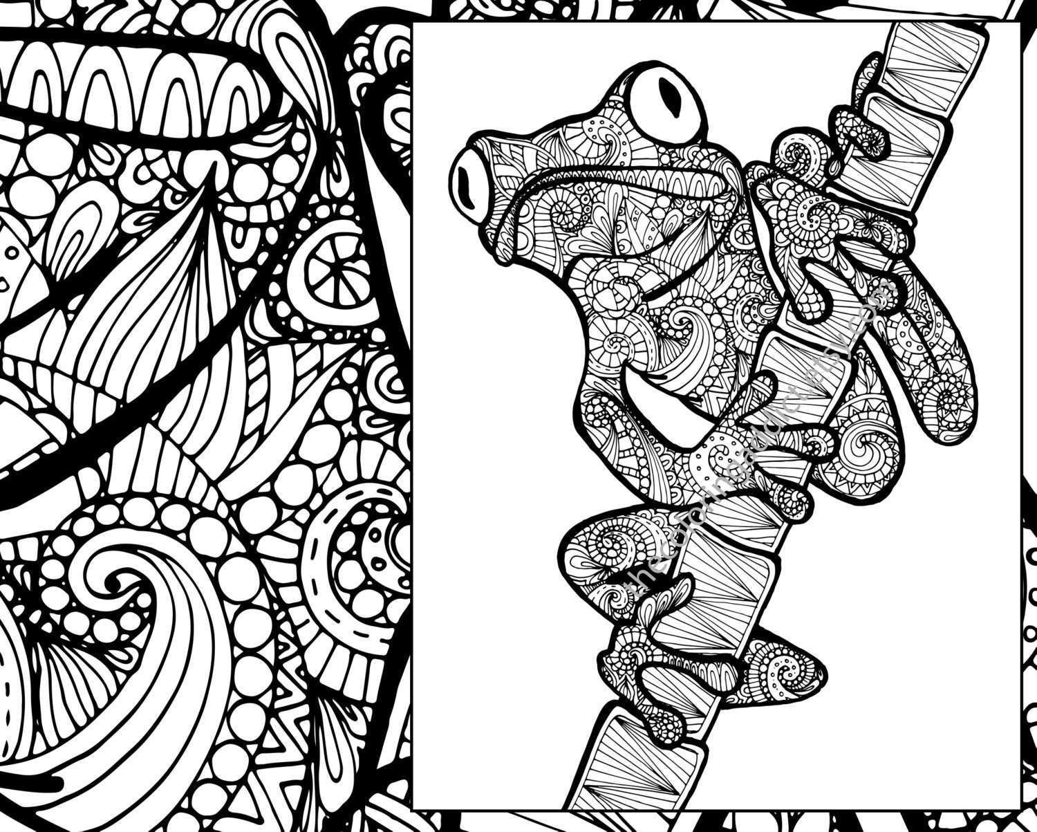 frog coloring sheet animal coloring pdf zentangle adult. Black Bedroom Furniture Sets. Home Design Ideas