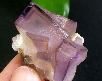 PHANTOM Cubic Purple Fluorite B2759China