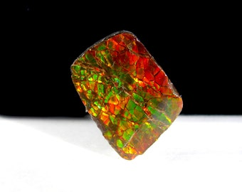 Ammolite Cabochon  ~ Alberta, Canada ~ Opal ~ 18mm x 14mm x 8mm depth