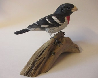 Rose-breasted Grosbeak, pocketknife woodcarving, songbird, life size