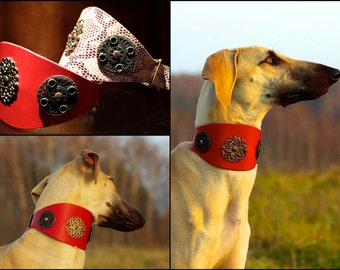 Leather dog collar ETERNITE