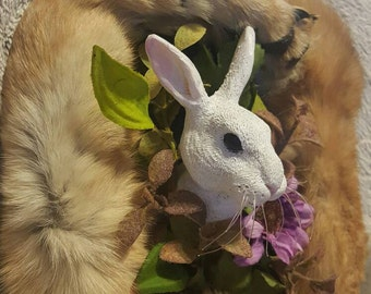 Rabbit sculpture in a mummified coyote paw frame