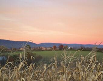 Straw - Fields - Sky - Straw Photo - Field Photo - Digital Photo - Digital Download - Instant Download - JPG
