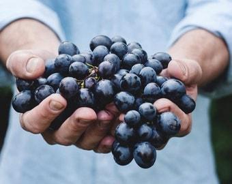 Grape - Grape Photo - Grape Photography - Food Photo - Food - Blue - Digital Photo - Instant Download - Digital Download - Dining Room Decor
