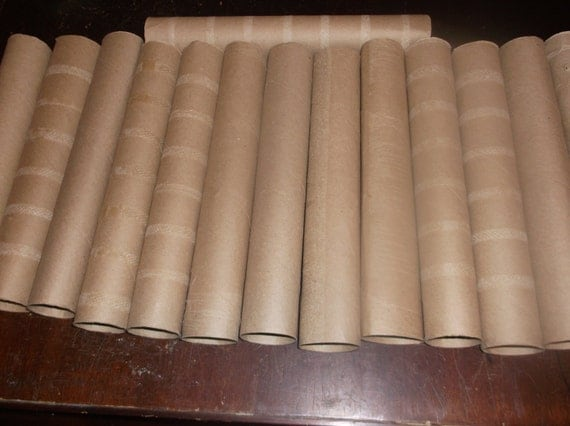 12 Empty Paper Towel Rolls For Crafts From Schafer2u On