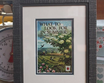 Framed post card of Lady Bird Books What To Look For In Summer first published 1960