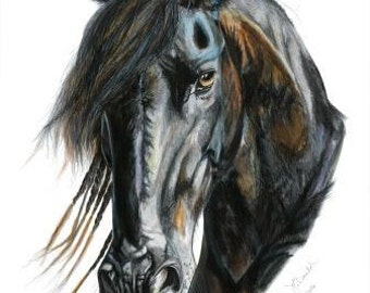 Signed, Numbered Prints of Original Equestrian Pen and Pencil Drawings - Fresian