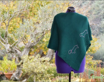 Wirehaired Dachshund a green poncho