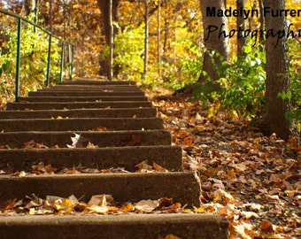 Steps to Autumn