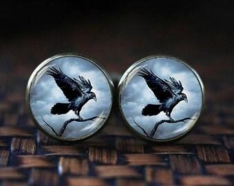 Raven cufflinks, Raven cuff links, Crow cufflinks, Bird Jewelry, Steampunk gothic cufflinks, Black Bird cufflinks