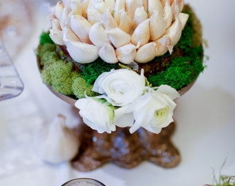 Garlic Flower (haftseen seer)