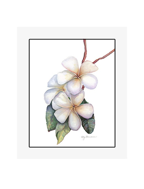 """Plumeria giclee print of an original watercolor painting on 100% cotton rag, soft texture, natural white, 20"""" x 24"""" matted and backed"""
