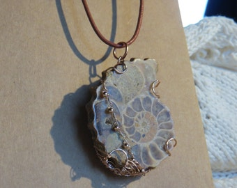 Ram's horn Ammonite fossil and rose gold pendant
