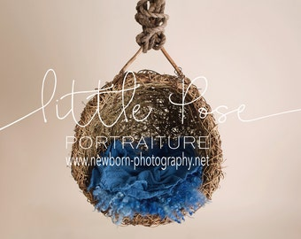 Little Pose ~ Hanging Vine Basket Blue Newborn Digital Background High Res jpg file